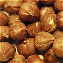 Hazelnuts - Roasted