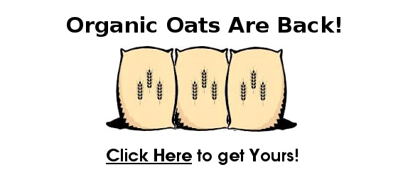 Organic Oats are Back!